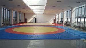 摔跤训练场地